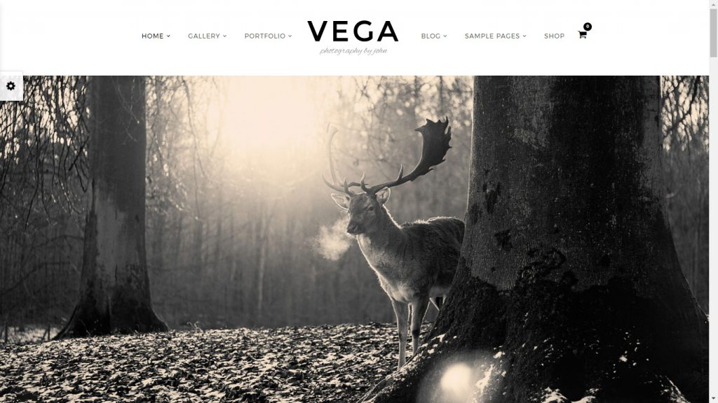 Wordpress Fotografenportfolio mit Shop VEGA